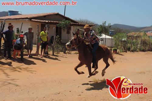 Brumado: Grupo de amigos realiza mais uma corrida de cavalos na comunidade de Riachão