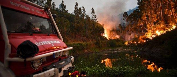 Confira o relato da advogada baiana que mora em Coimbra, a 60 km do incêndio. Foto: Divulgação
